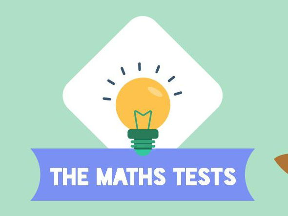 Y6/7 Maths Baseline Assessments (ideal for KS2 SATs)