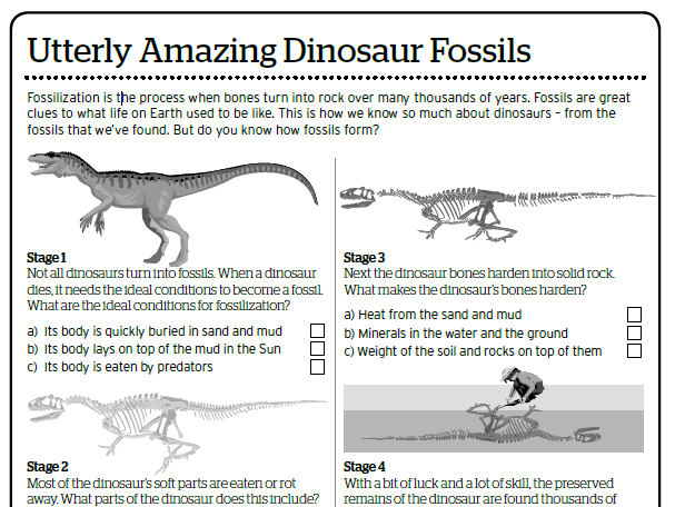 Utterly Amazing Dinosaur Fossils KS1/ KS2 Activity Sheet