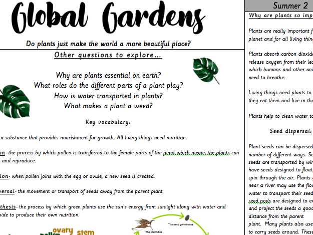 Year 3 Plants 'Global Gardens' Knowledge Organiser