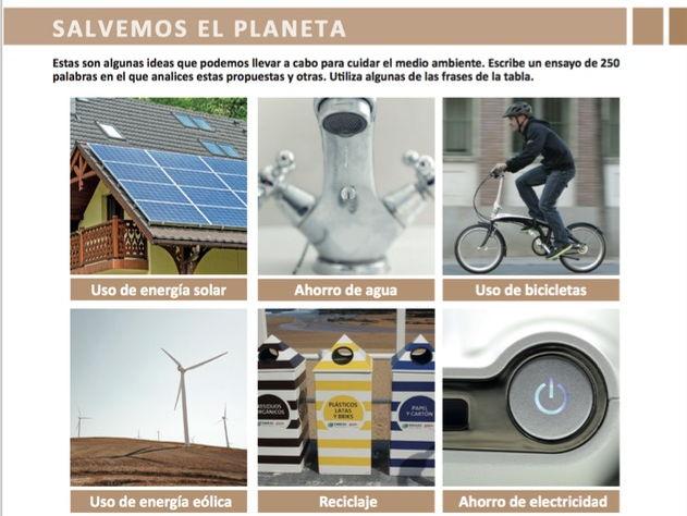 El medio ambiente (Madrid's pollution problem)