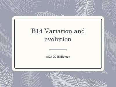 AQA GCSE Biology (9-1) B14 Variation - ALL LESSONS