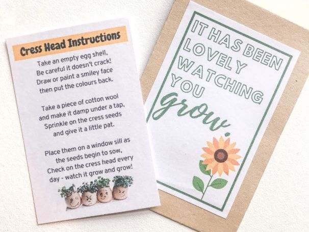 Cress Head Gift and Instructions
