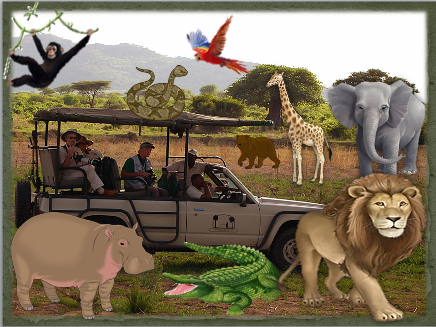 EFL TEFL Elementary lesson and worksheets ANIMALS and the ZOO