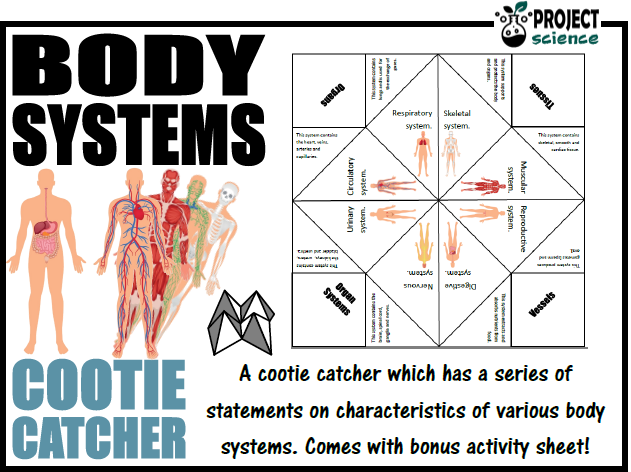 Body Systems Cootie Catcher
