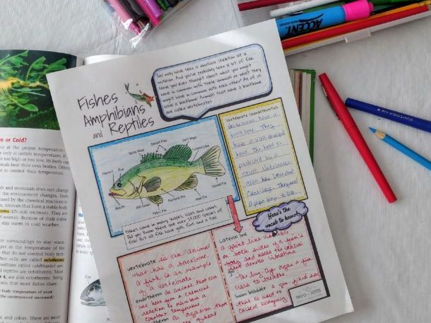 Info-Jots Fishes, Amphibians and Reptiles