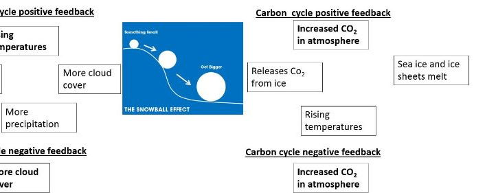 A Level; water and carbon cycle: positive & negative feedback, short term changes & Spearmans rank