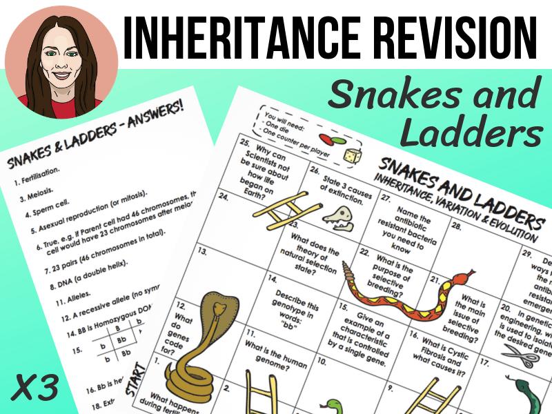 Inheritance Revision SNAKES & LADDERS | GCSE 9-1