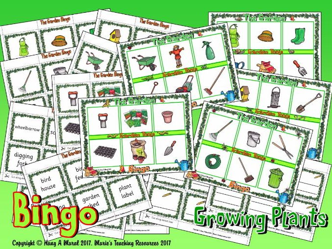 Growing Plants – Bingo
