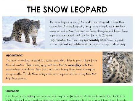 LKS2 - Non-Chronological Report - Model Text - 'Snow Leopards' with range of supporting resources