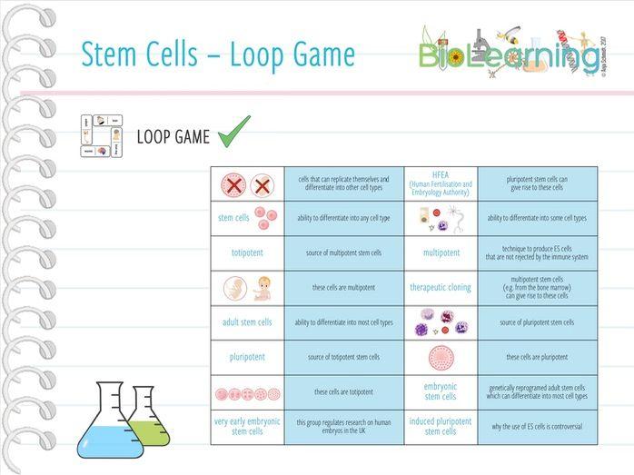 Stem Cells - Loop Game (KS5)