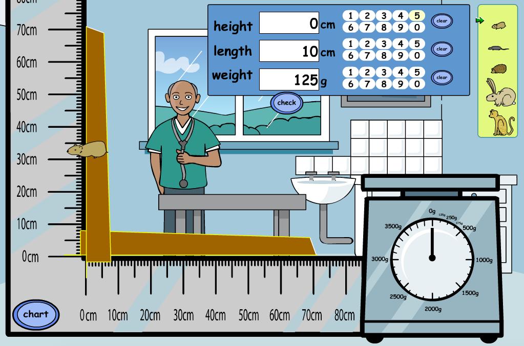 At the Vets Interactive Activity - KS1/KS2 Measurement