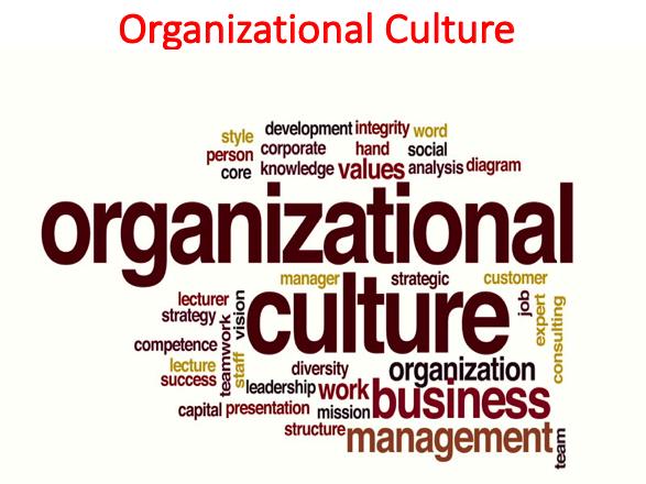 Organizational Culture Lecture (Organizational Behavior)