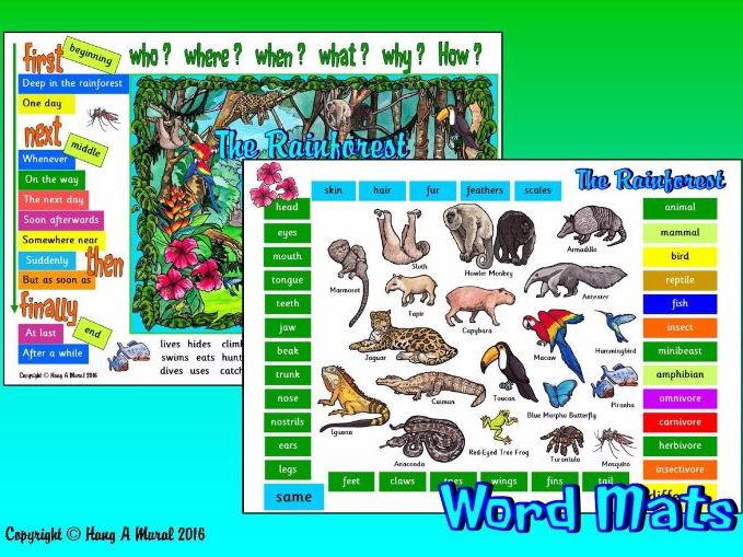 The Rainforest - Word Mats