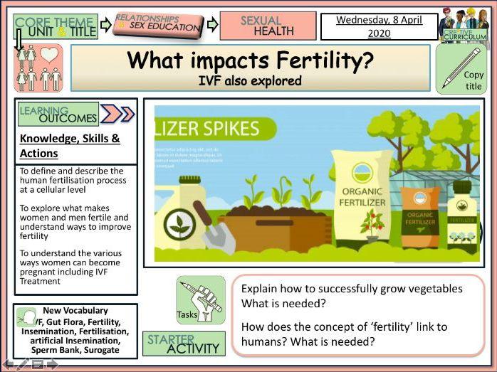 Fertility Women and Men - What Impacts it?