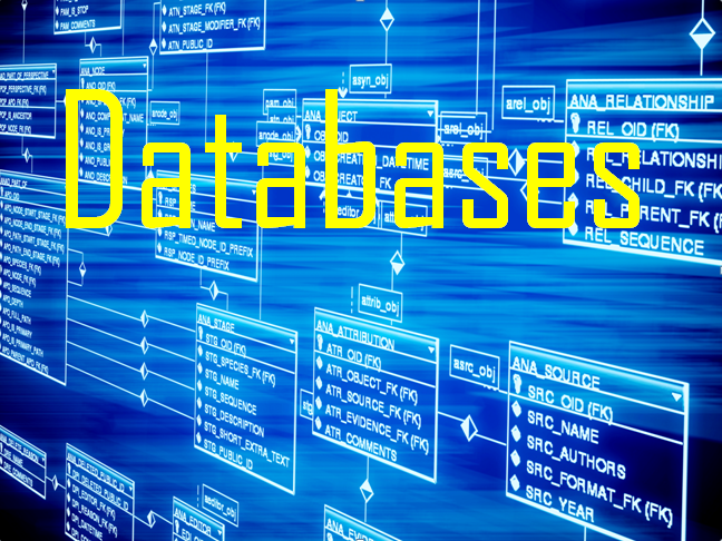 Computing (Year 3) – Introduction to Databases (6 lessons plans, presentations)