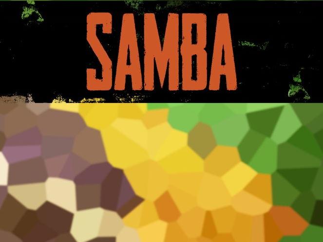 Samba KS2-KS3 Book (PDF)