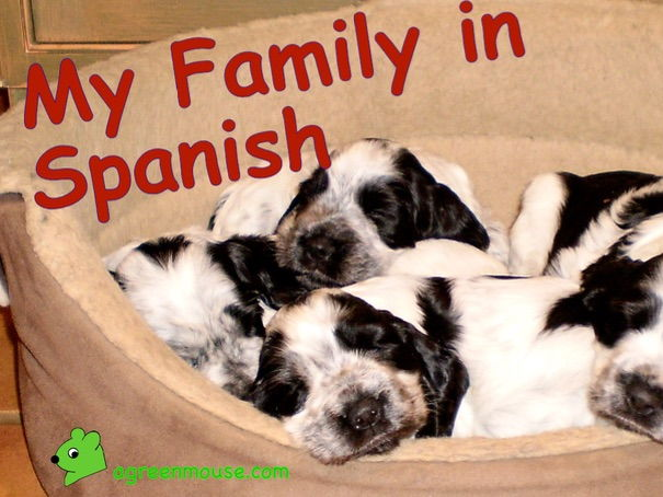 My Family in Spanish - Vocabulary + Practice