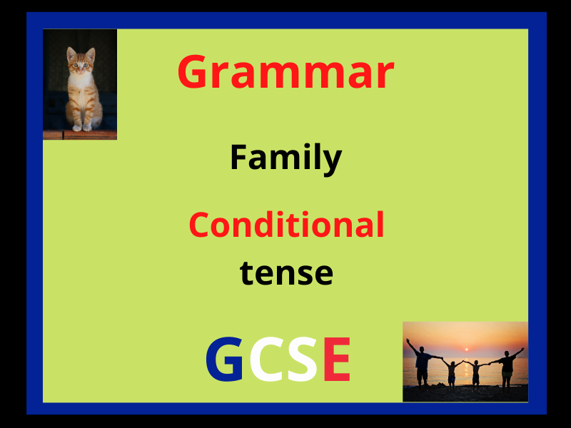 French conditional tense - family