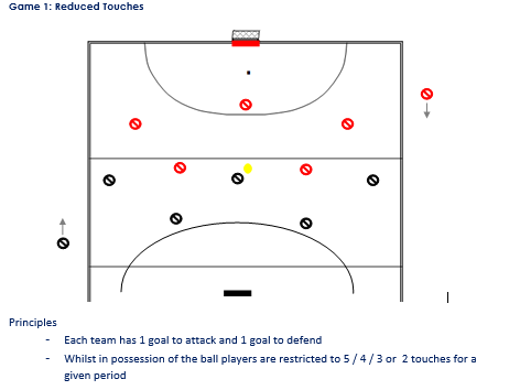 Small Sided Conditioned Games - Hockey