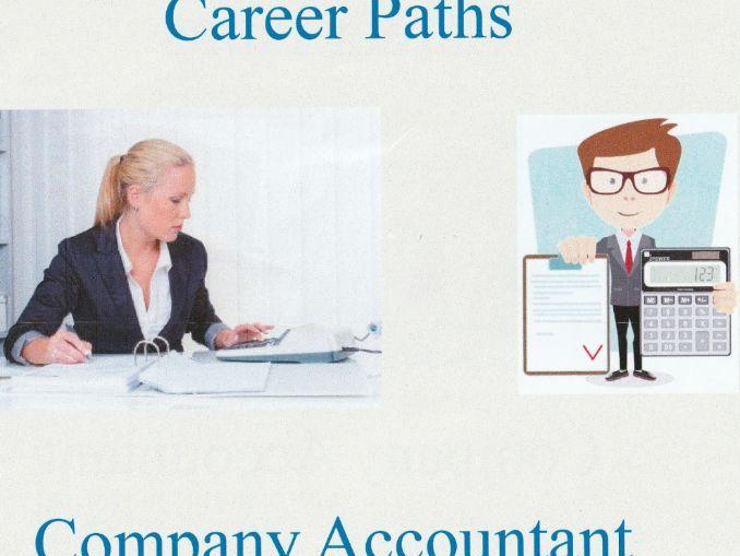 PowerP Presentation - Company Accountant