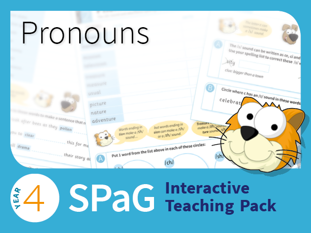 Year 4 SPaG Interactive Teaching Pack - Pronouns