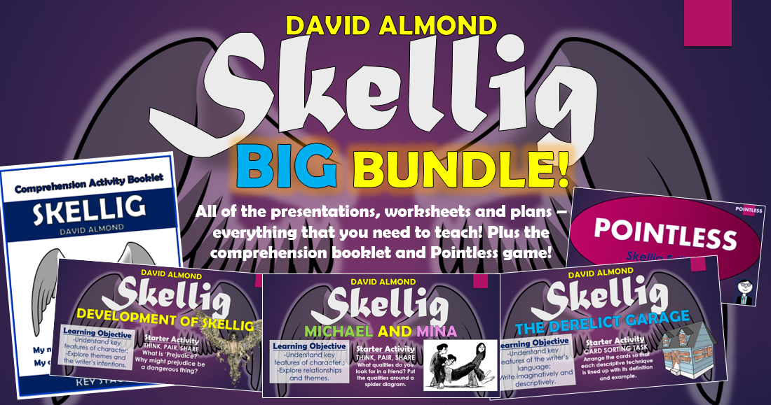 Skellig Big Bundle!