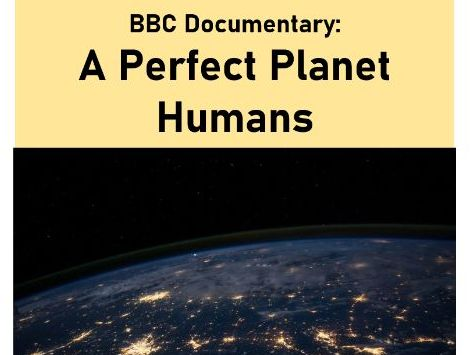 Perfect Planet - Humans