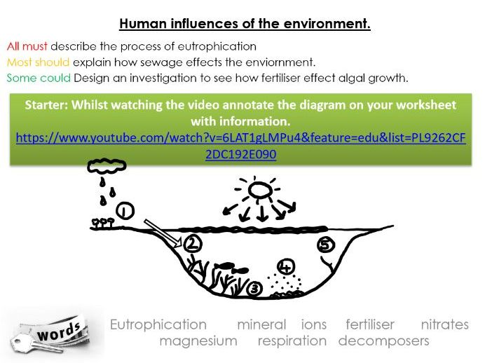 IGCSE Biology Eutrophication and Sewage water pollution human influences on the enviornment lesson