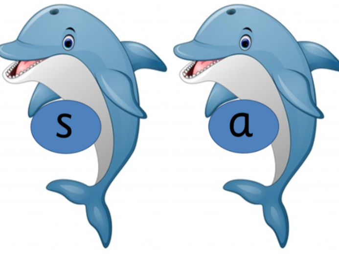 Dolphin Phonics Sound Cards Phases 2, 3 and 5