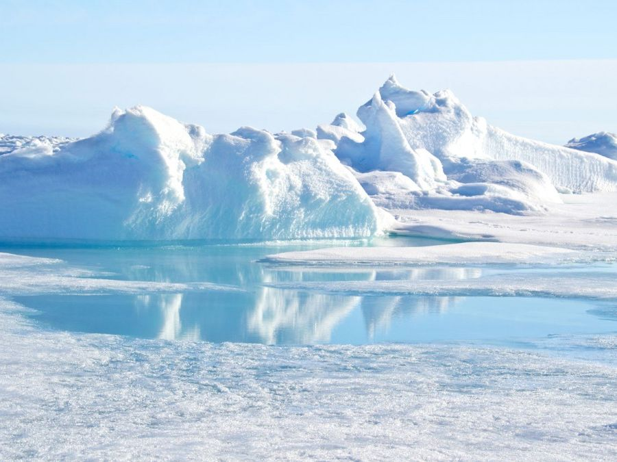 GCSE Geography - The Arctic Factsheet
