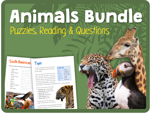 Animals Bundle (Puzzles, reading & questions)