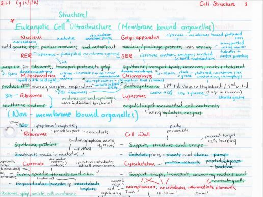 OCR A Level Biology Cell Structure Revision Poster