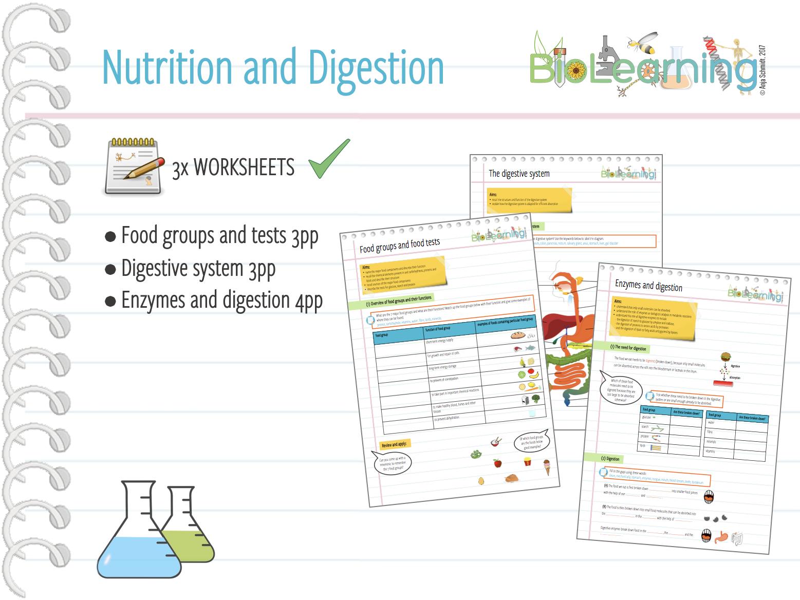 worksheet Nutrition Worksheets nutrition and digestion 3 worksheets ks3ks4 by anjacschmidt teaching resources tes