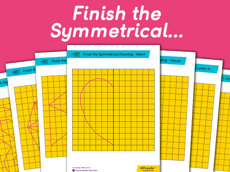Finish the Symmetrical Drawings