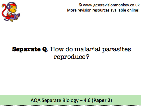 Revision Cards - AQA Separate Biology 4.6