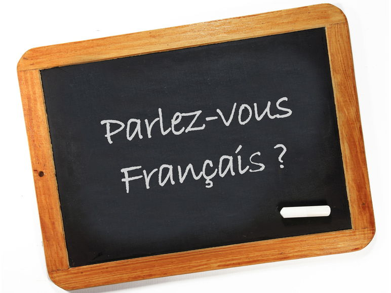 French resources bundle. Variety of topics for beginners/ new term.