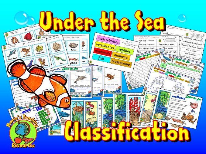 Under The Sea - Animal Classification