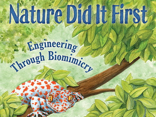 Nature Did It First Activity Kit