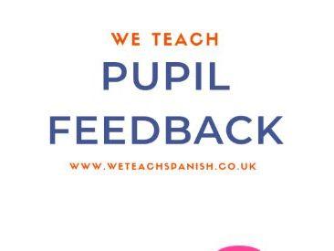 Pupil Feedback Sheets