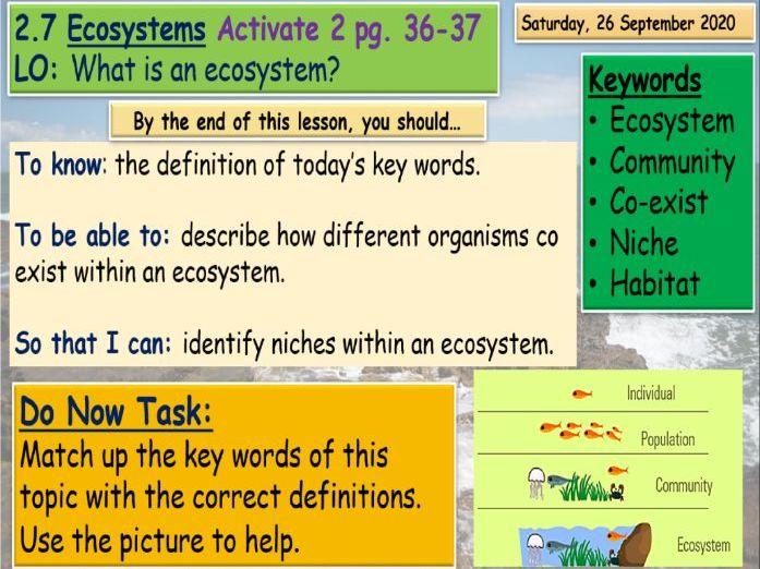 Ecosystems KS3 Science