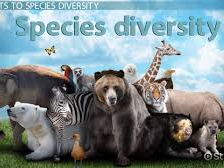 Species, Cloning, Classification, Behaviour for survival and Changing species