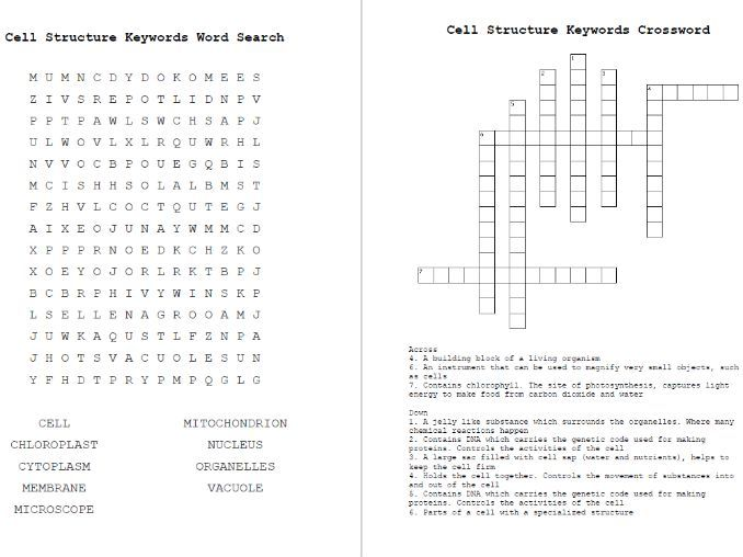 Cell Structure Word Search & Crossword KeyWords