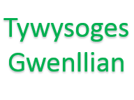 Y Tywysoges Gwenllian - Stori