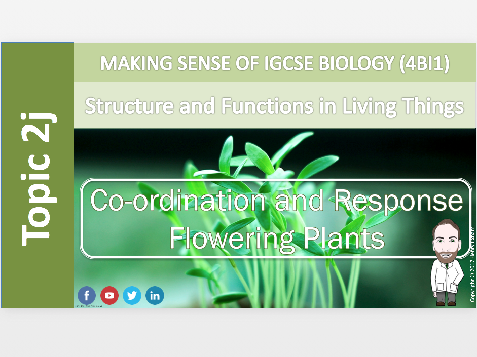 IGCSE Biology 9-1 - 2j Coordination and Response - Flowering Plants