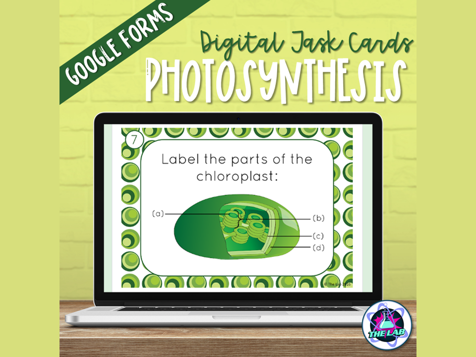 Photosynthesis Digital Task Cards