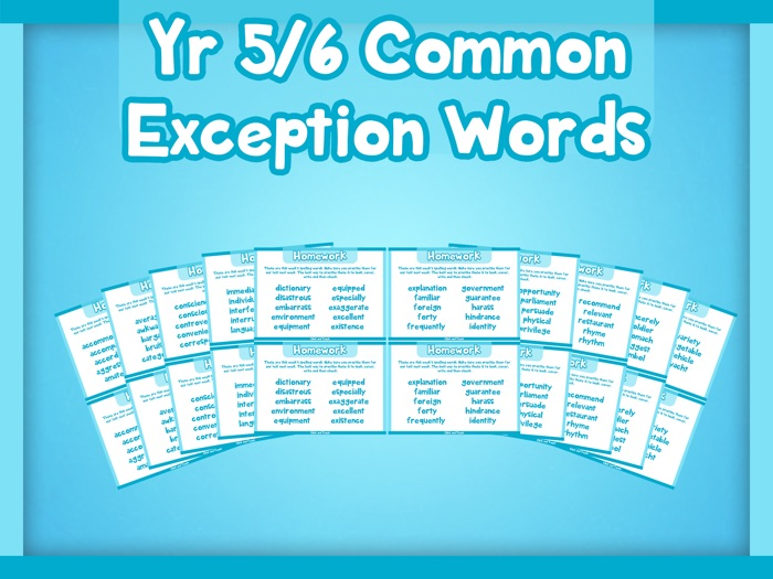 Year 5/6 Common Exception Words Homework