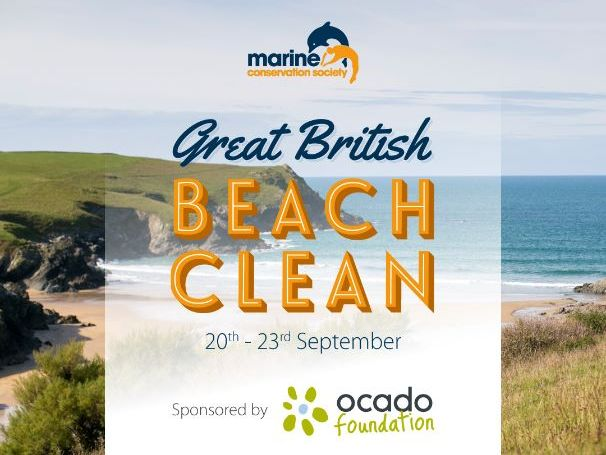 Join our Great British Beach Clean this September!