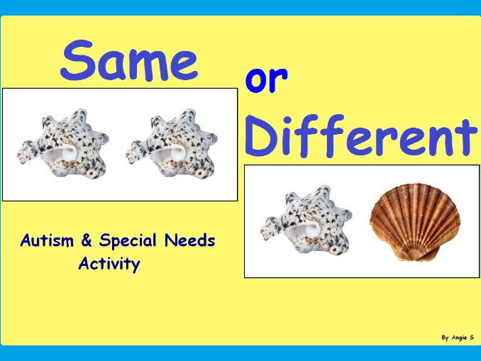 Same or Different- Seashells