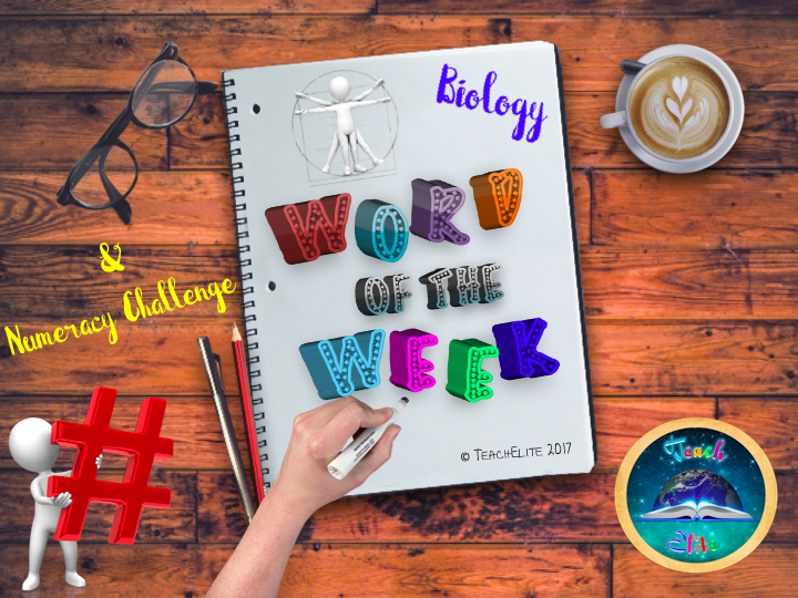 Biology Summer Term Word of The Week - Bell Tasks FREE with code