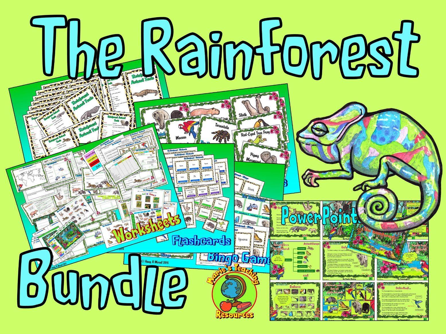 The Rainforest Bundle